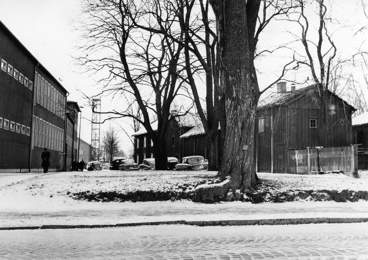 Kvarteret Almen i Karlstad: Almenparken 1959.