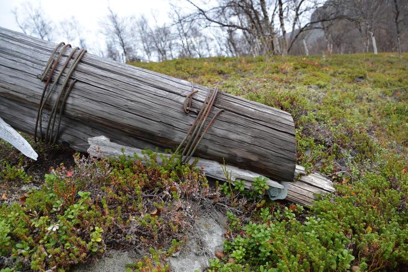 Linjekurser. Mattisdalen stolpeskjøt, 2016 2 (Foto/Photo)