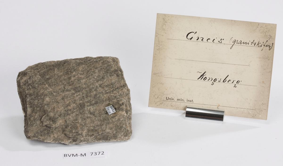 Etikett på prøve: Gneis (granitskifer) Kongsberg