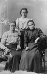 Atelierportrett av tre damer fra Tranøy. 1905