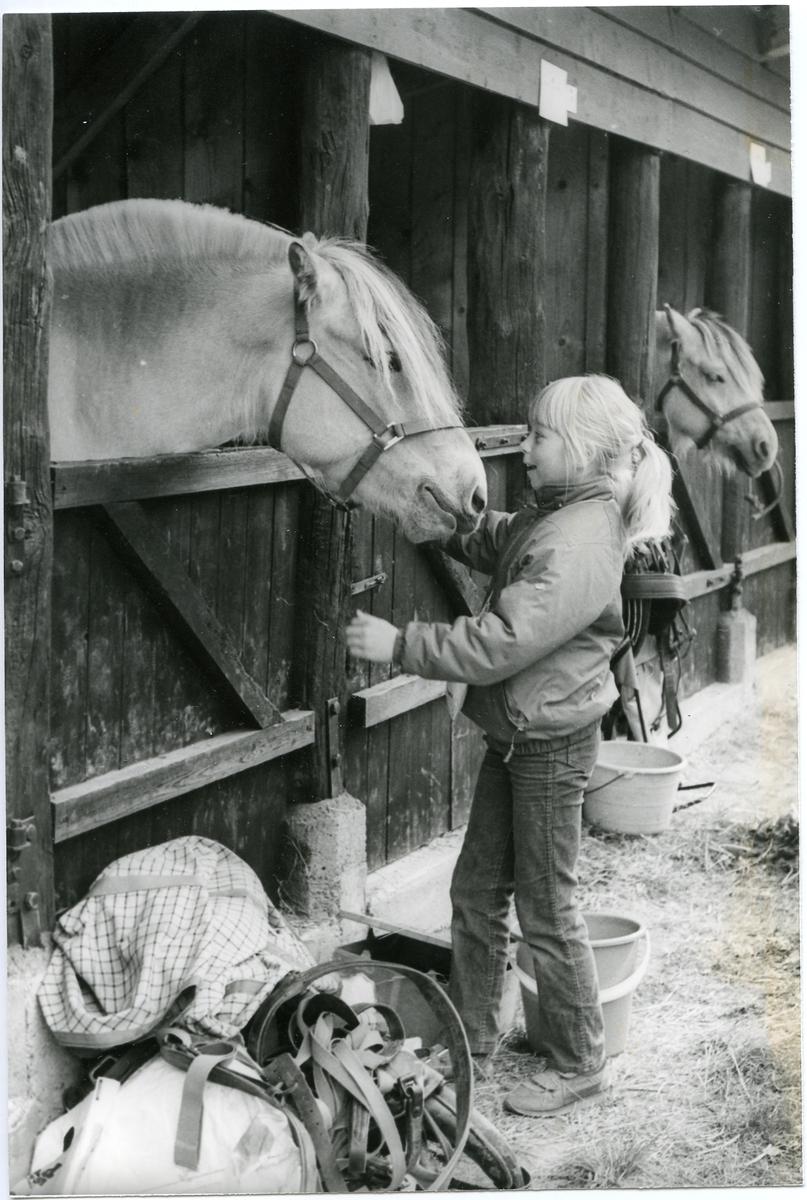 Jente med hest.