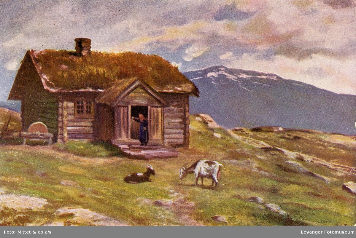 Postkort  av seter i fjellet.