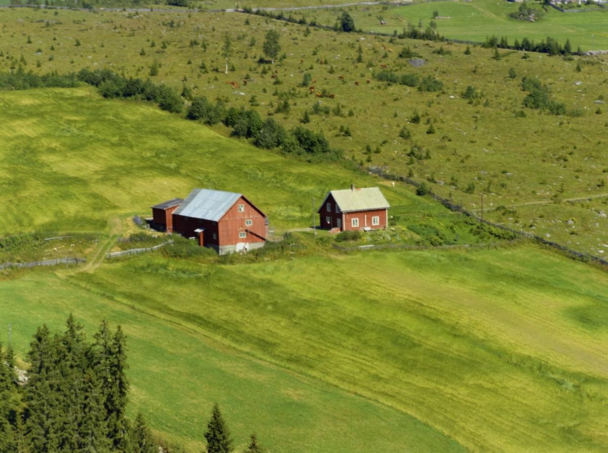 Svedal. Gårdsanlegg med rødmalt både inn- og uthus. Kulturlandskap med dyrka mark og utmark.