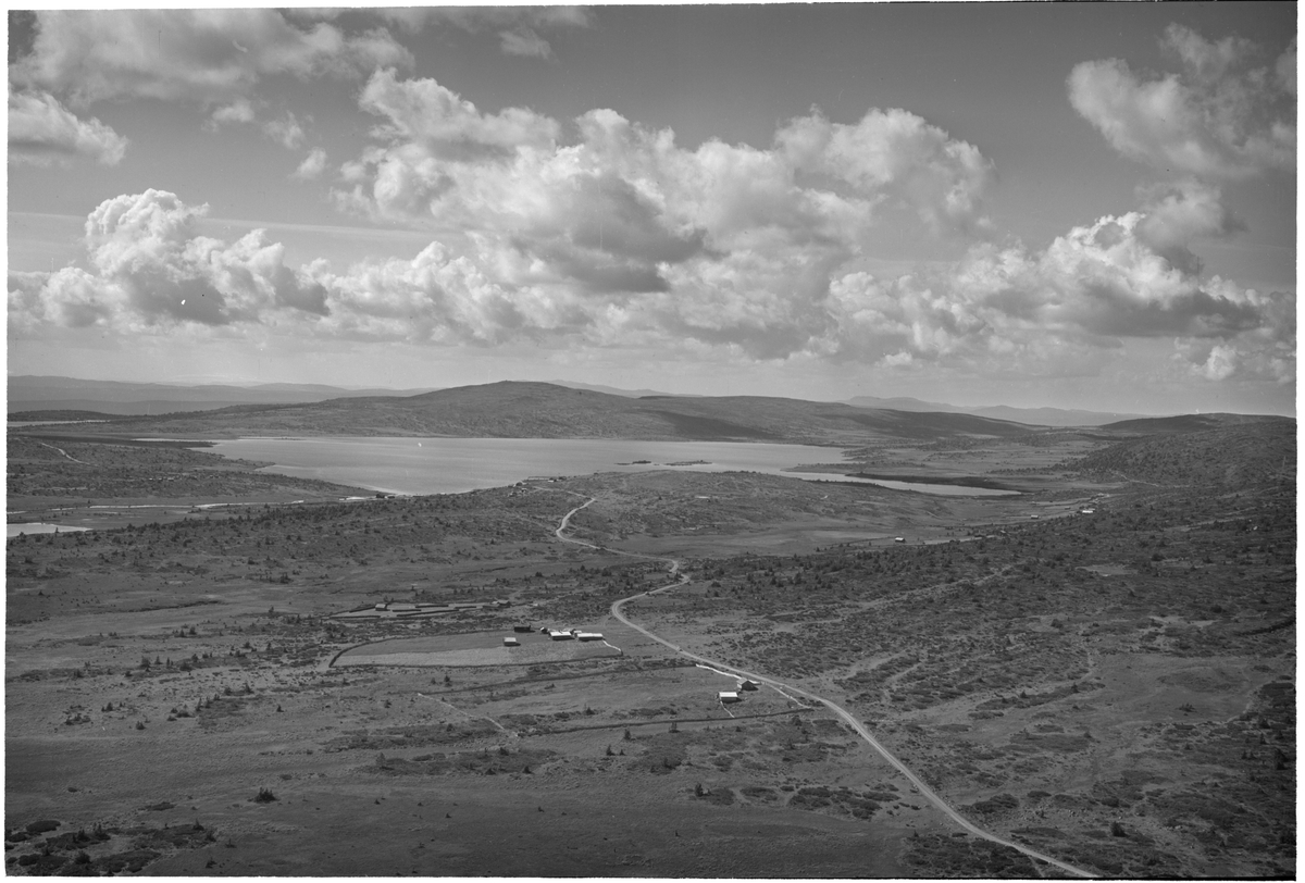 Reinsvatnet, 18.08.1951, sett mot Nevelfjell, seterdrift, vei