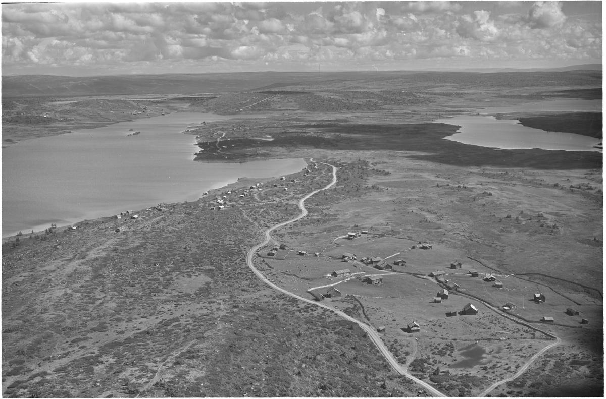 Nyseter/Melsjøen til venstre, Mjogsjøen til høyre. 18.08.1951, vann, hytter, seterhus, vei