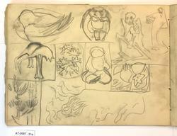 Ni skisser av fugl, skjelett, planter mm [Tegning]