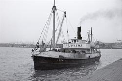 M/S Løven I (Ex.  D/S, Gyldenløve III, Alf, Lidköping, Birge