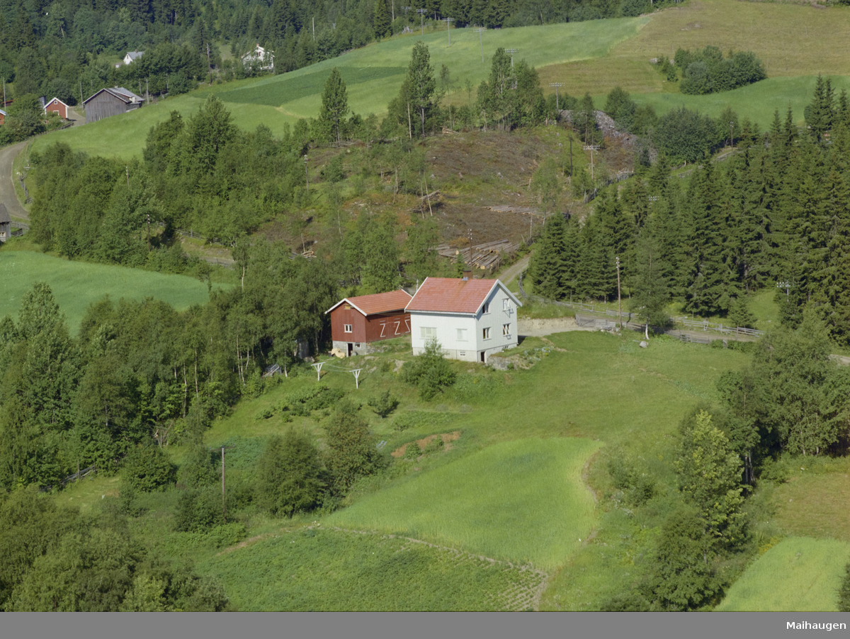 Saksumdalsvegen 284, Vingnes, kulturlandskap, bygninger, skog