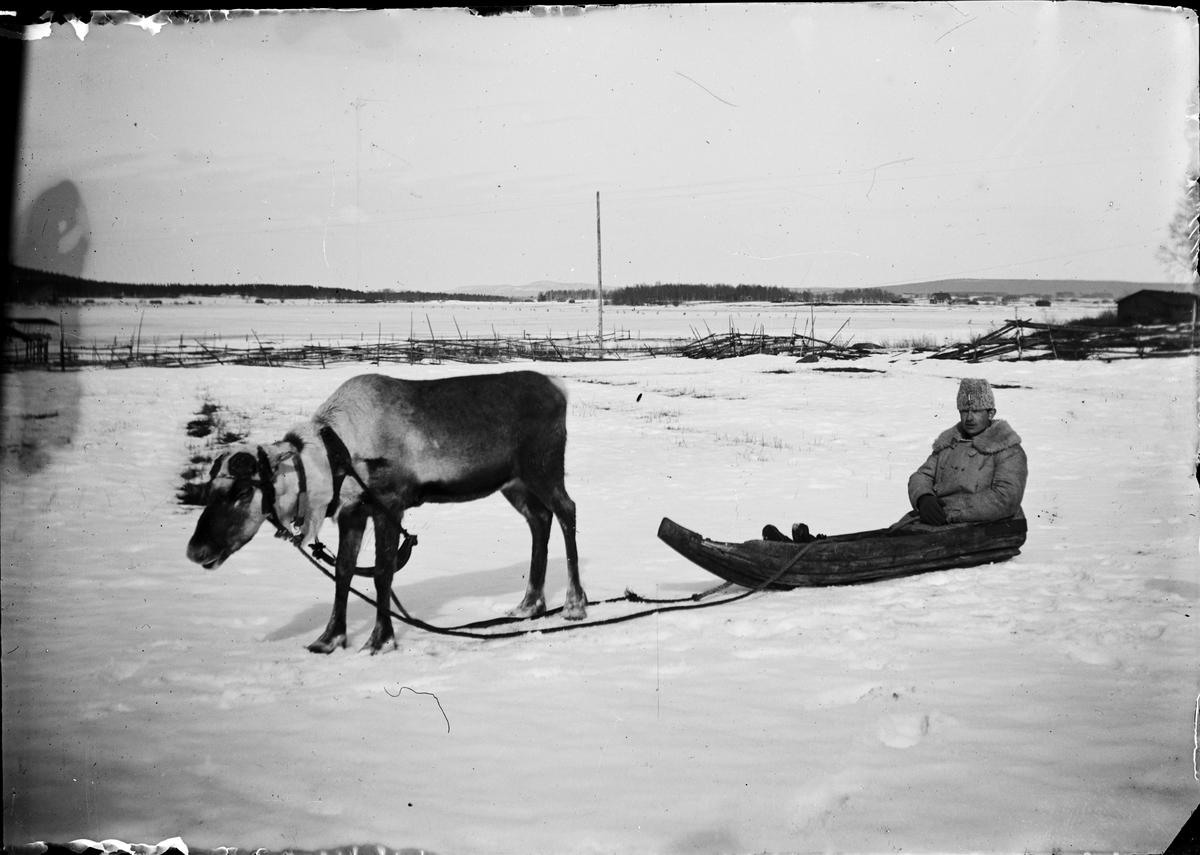 Man i uniform sitter i pulka dragen av en ren, Sverige