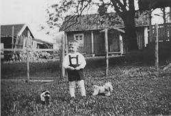 Jon K. Ødegaard, 3 år, ute med lekehunder i Søgarn, Gauterud