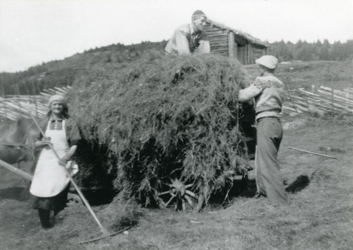Marit, Halgrim og Asbjørn Haugen.