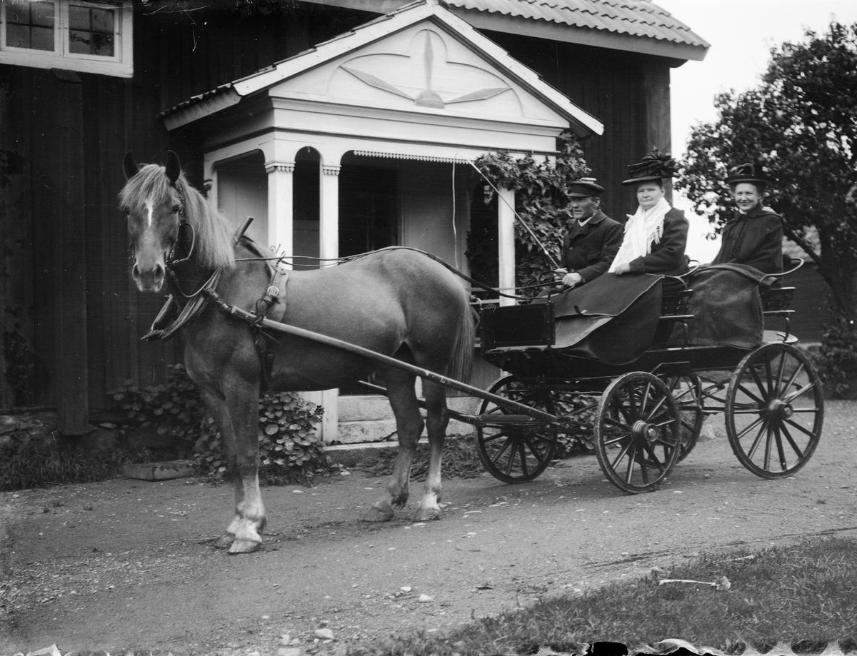 August och Karolina Alinder med dottern Anna Johansson i hästdragen vagn utanför bostaden i Sävasta, Altuna socken, Uppland