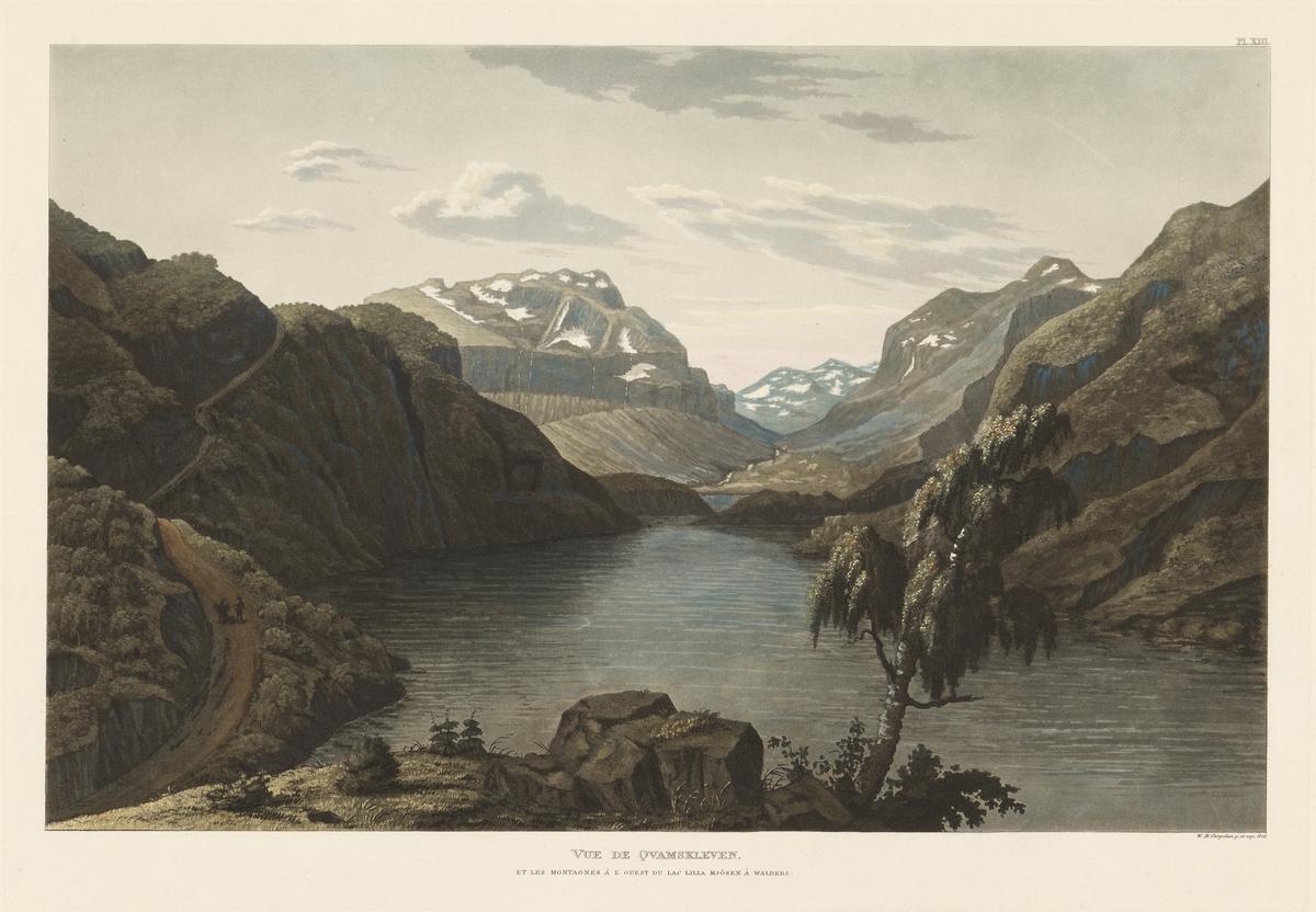 Kvamskleiva og fjellene vest for Vangsmjøse i Valdres [Grafikk]