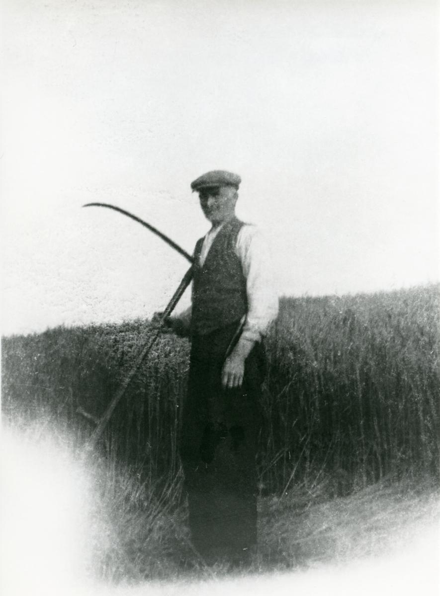 Petter Kleven under ein ljåslått på Brattrudsetra i 1930-årene.
