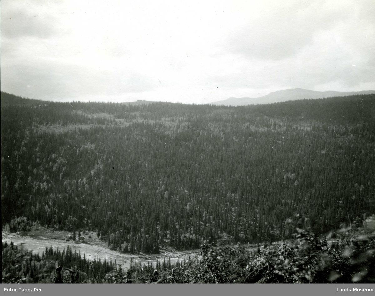 Dokkadalen nord for Høgfossen
