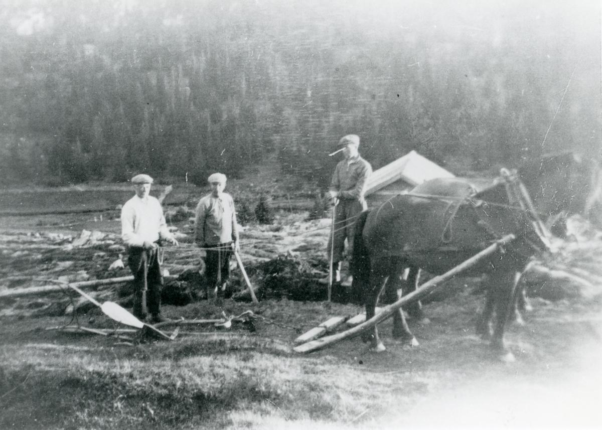 Petter og Kolbjørn Kleven og Torvald Larsen.