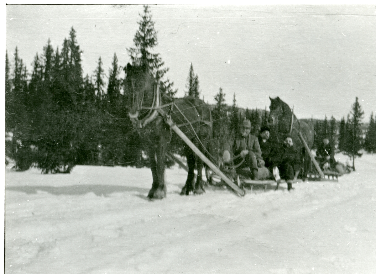 Harald Skar d.e. Vintertrafikk på Veståsen, Bagn.