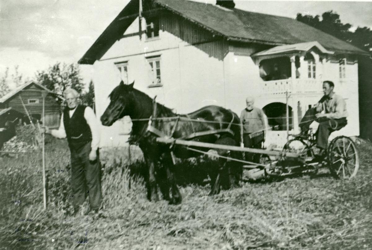 Slåtten på Nedre Skjærstein.