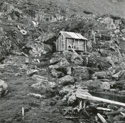 Kvernhus ved ei elv på Alnes, Godøy. (?)