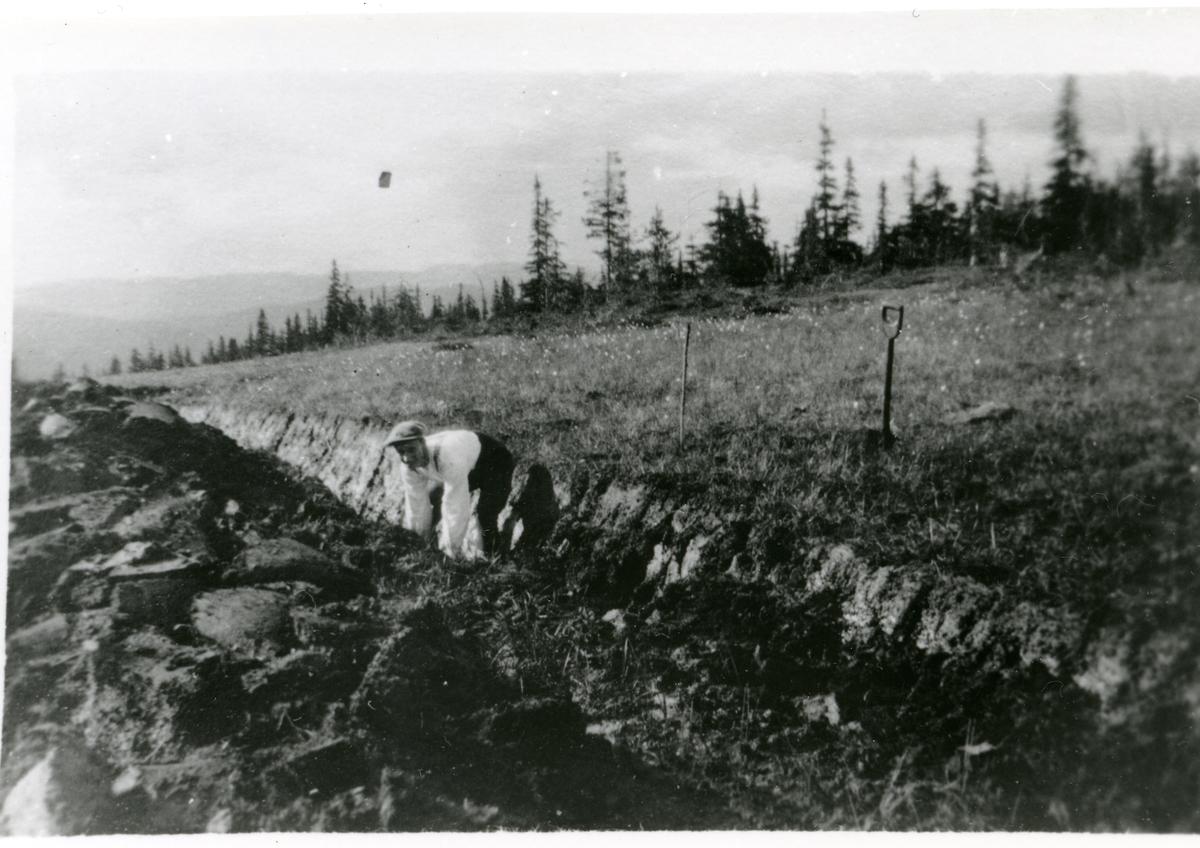 Grøftegraving i Sørlie, Hedalen.