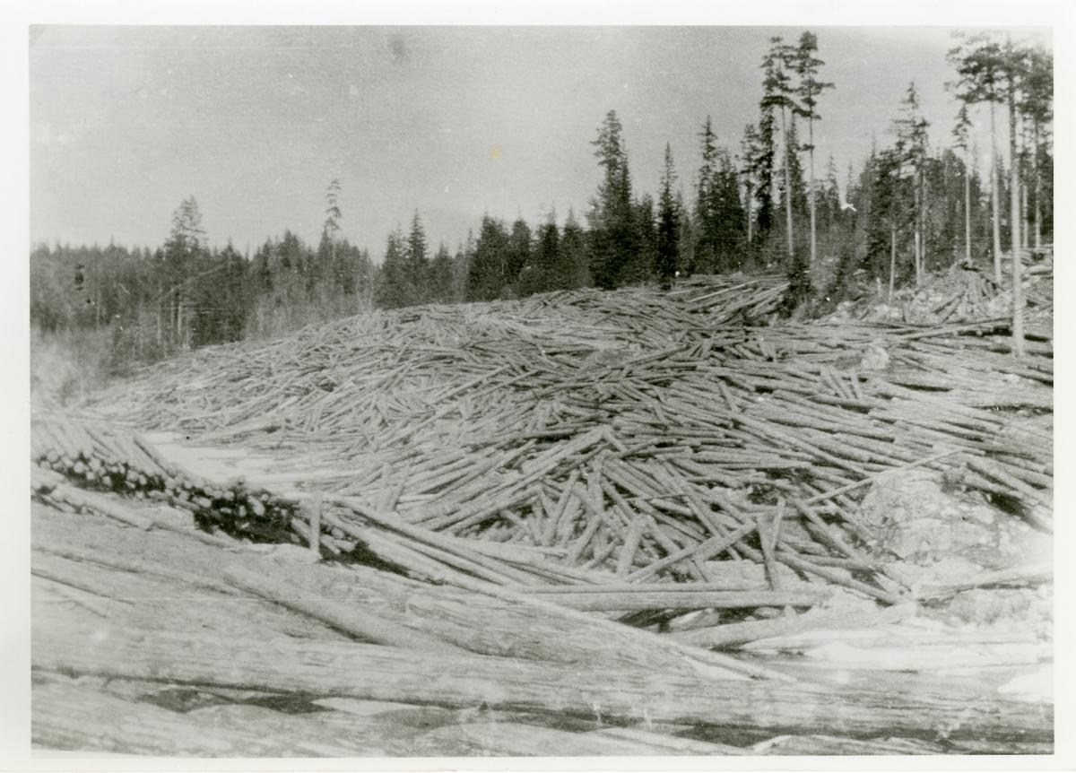 Tømmervelte