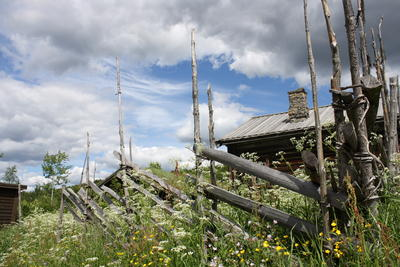 Trysil bygdetun i blomsterprakt