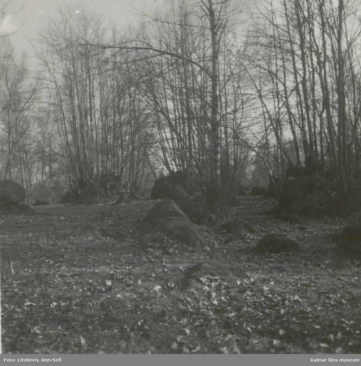 Gammal åker med odlingsrösen; högt belägen på en ås.