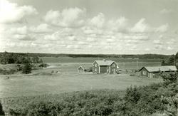 Panorama över gården.