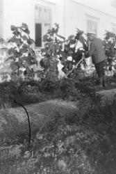 Vaaler gård, Ole K. Vaaler luker i hagen, blomsterbed, solsi