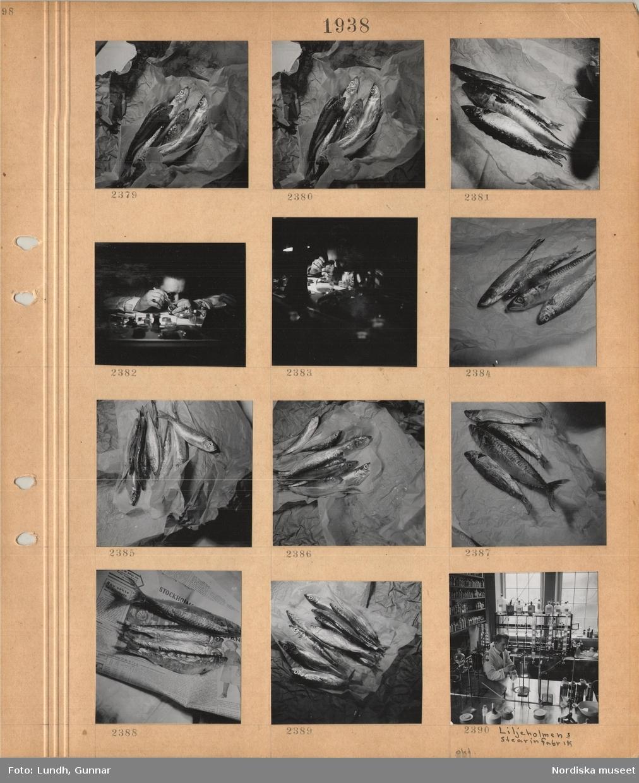 Motiv: Orensade fiskar ligger på omslagspapper, en man med lupp i ögat arbetar med ett mindre ur vid ett arbetsbord, interiör av ett laboratorium, Liljeholmens stearinfabrik, en man i vit arbetsrock står vid en arbetsbänk, flaskor på hyllor.