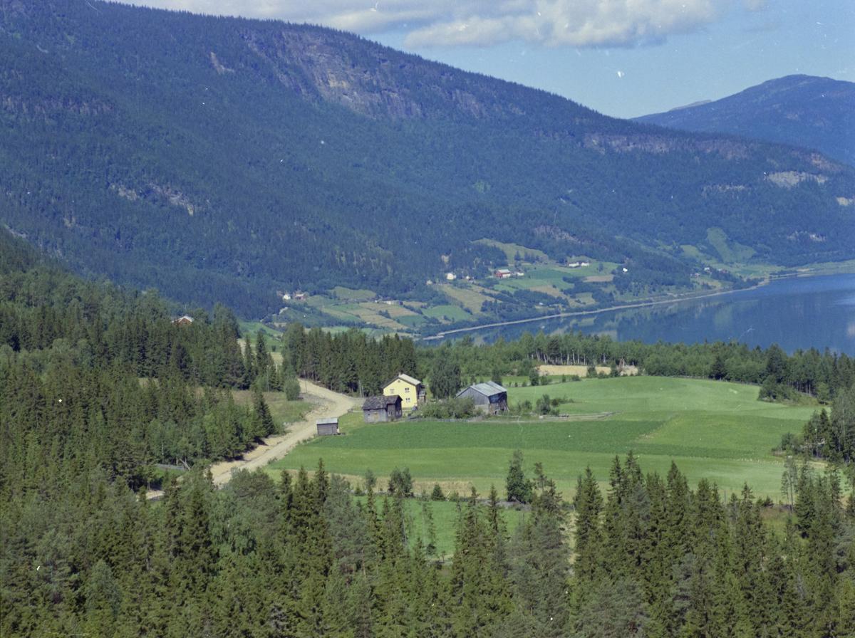 Øyer, Tretten, oversiktsbilde vestsiden med Pålsrudmoen/Moen midt i bildet. Gudbrandsdalslågen/Losna til høyre, kulturlandskap, bygninger, skog