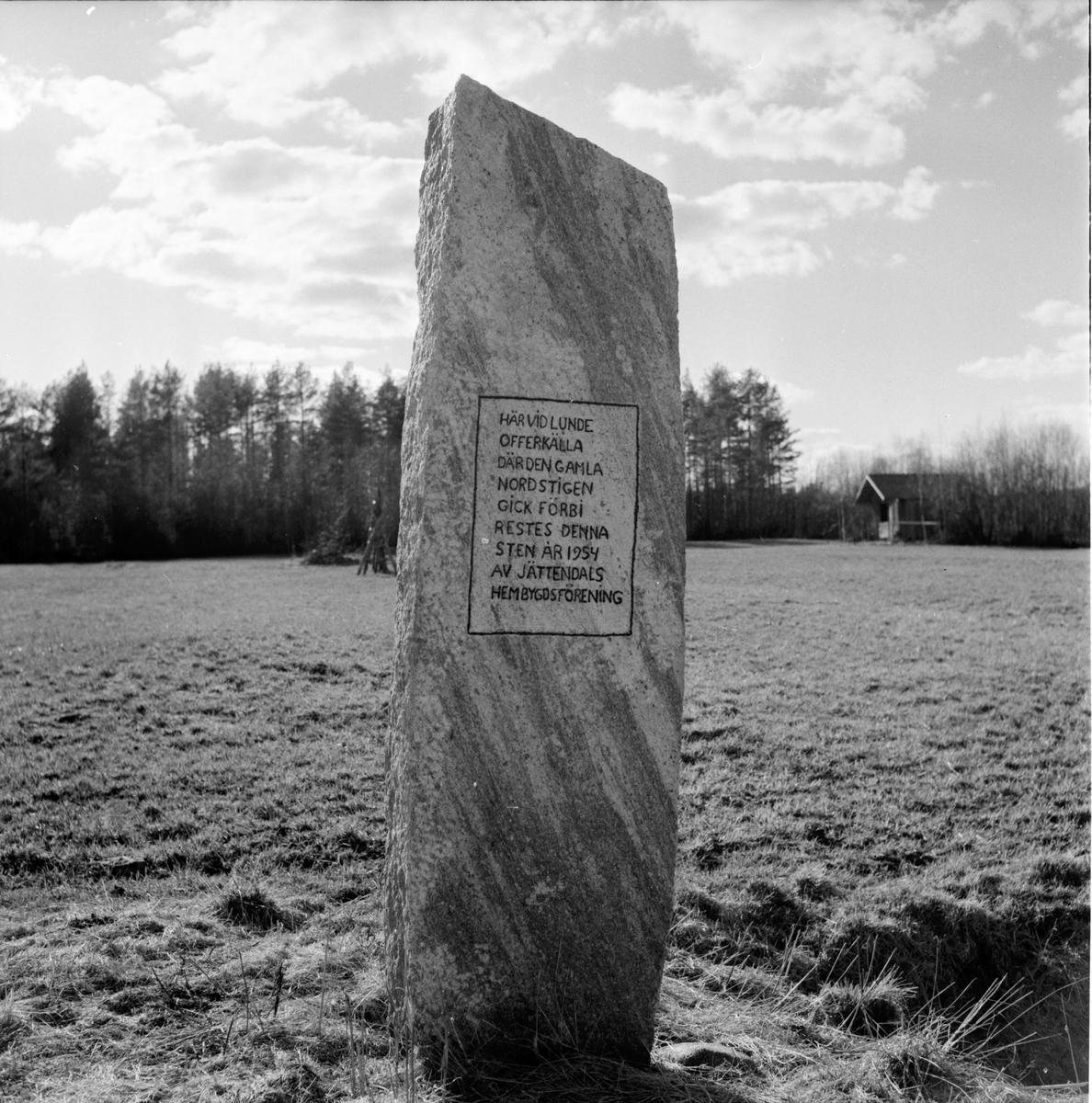 Mellanfjärden, Stocka, Filmkomm. på utflykt hos G. Hammar, 7 Maj 1963