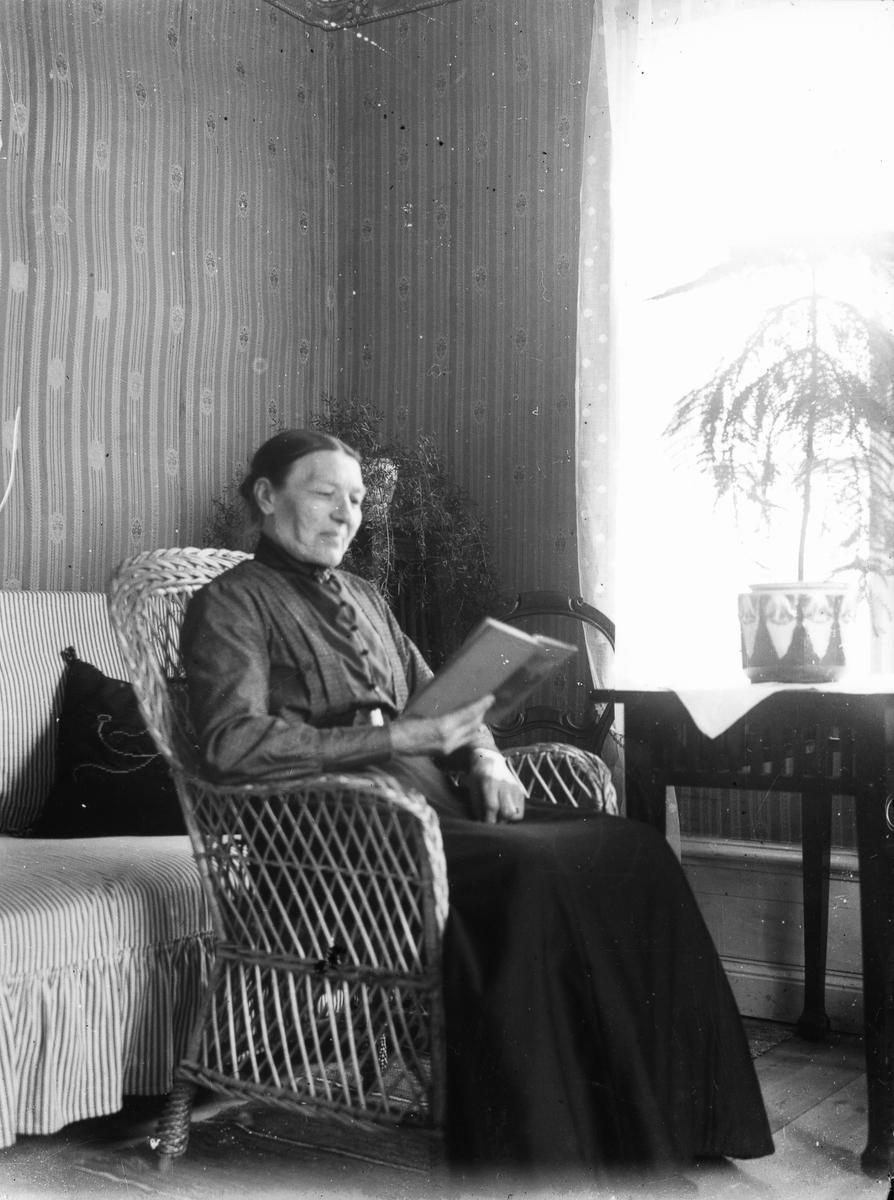 Äldre, läsande kvinna i en korgstol.
