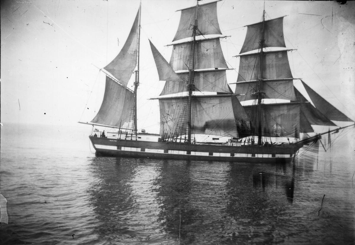 Segelfartyget Pauline.