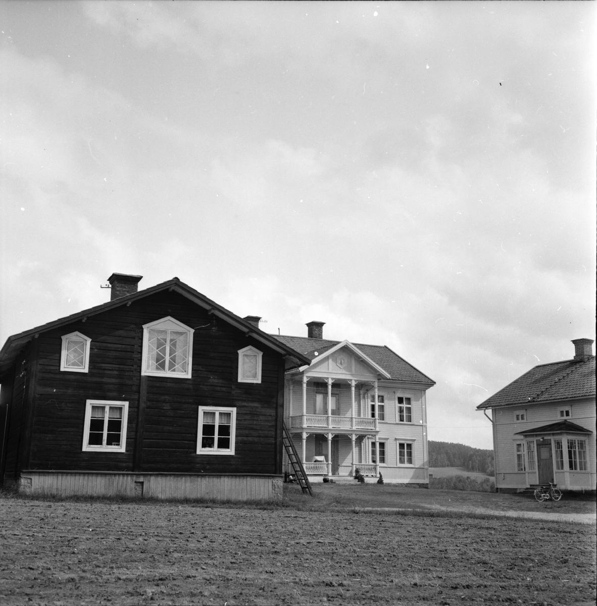 Växbo, Ryamatta, Vyer,Naturbilder, Wallins, 4 Juli 1962