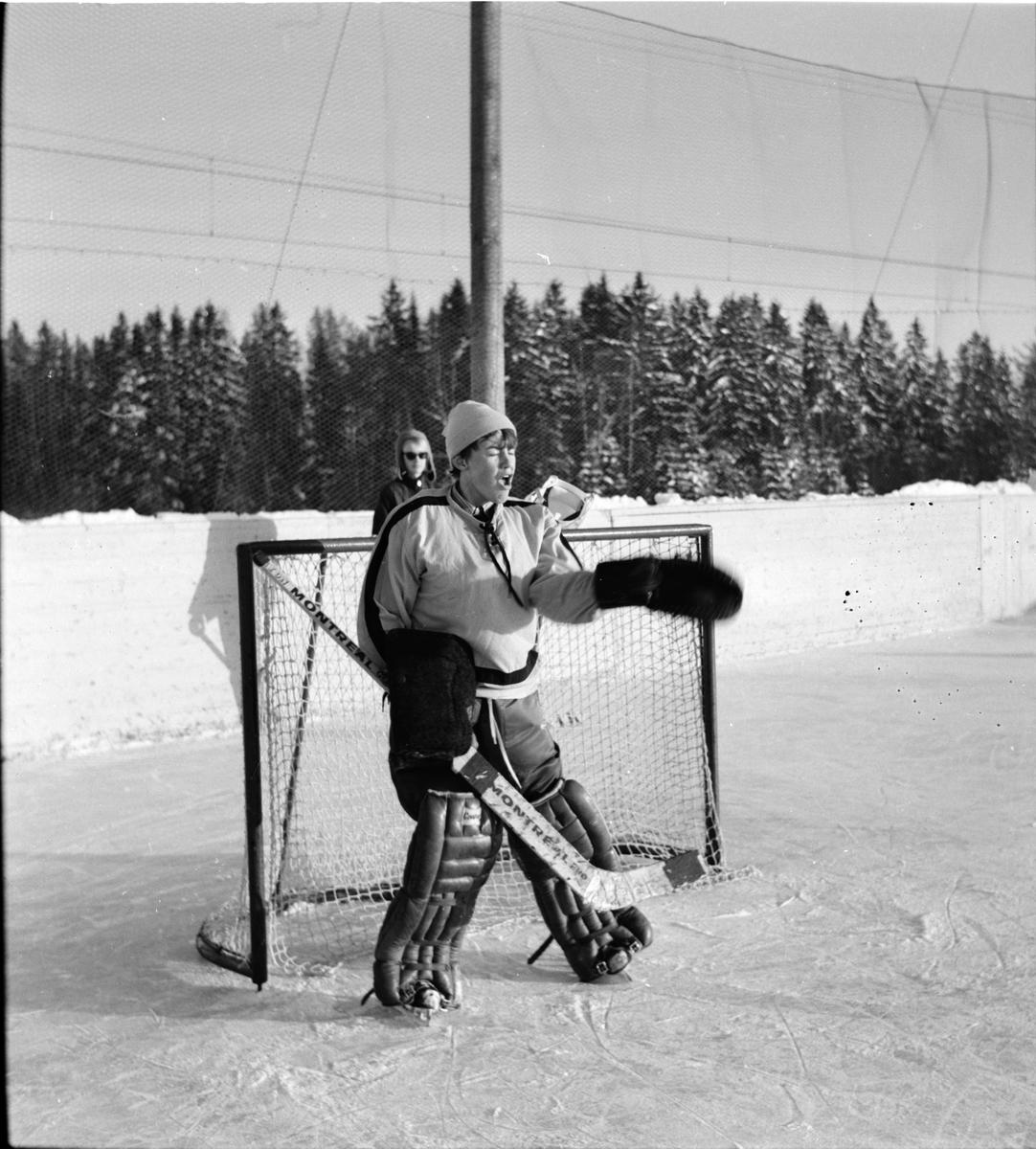 Arbrå, Sportlovet, Februari 1969