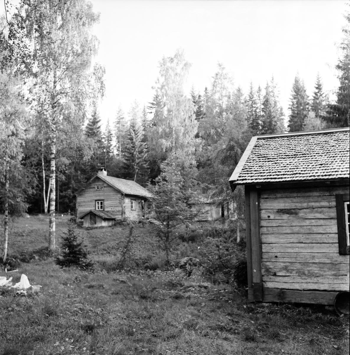Arbrå, Änga-Nybo, Juni 1971