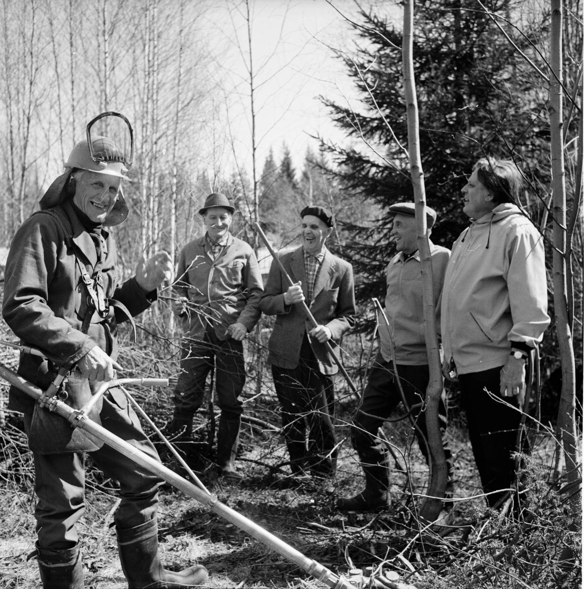 Dalsjön, Röjning vid Dalsjögården, Per Nilsson krattar, Maj 1972
