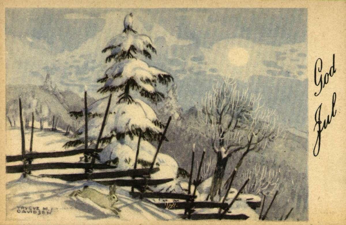 Julekort. Ubrukt. Vintermotiv. Ei snøtung gran, en skigard og en hare i forgrunnen. I bakgrunnen solskinn over skog dekt av snø. Illustrert av Trygve M. Davidsen.