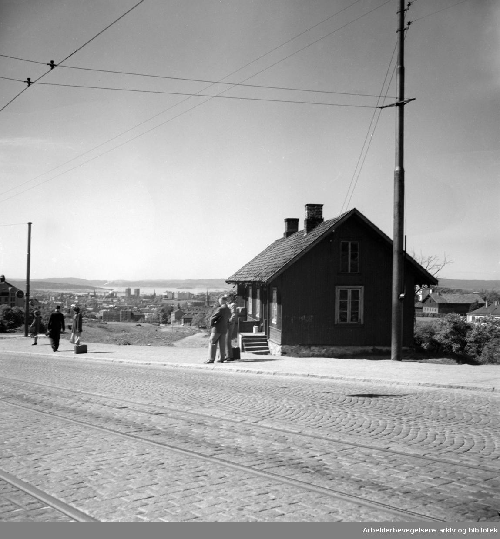 "Trondheimsveien. ""Rødstua"". 1950"