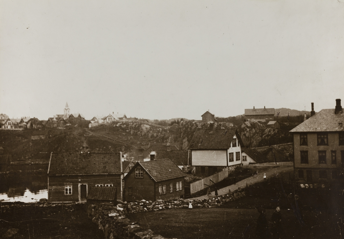 IX Hasseløen - Hasseløy og Haugesjøen sett mot nordøst ca.1895
