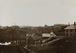 Hasseløy og Haugesjøen sett mot nordøst ca.1895