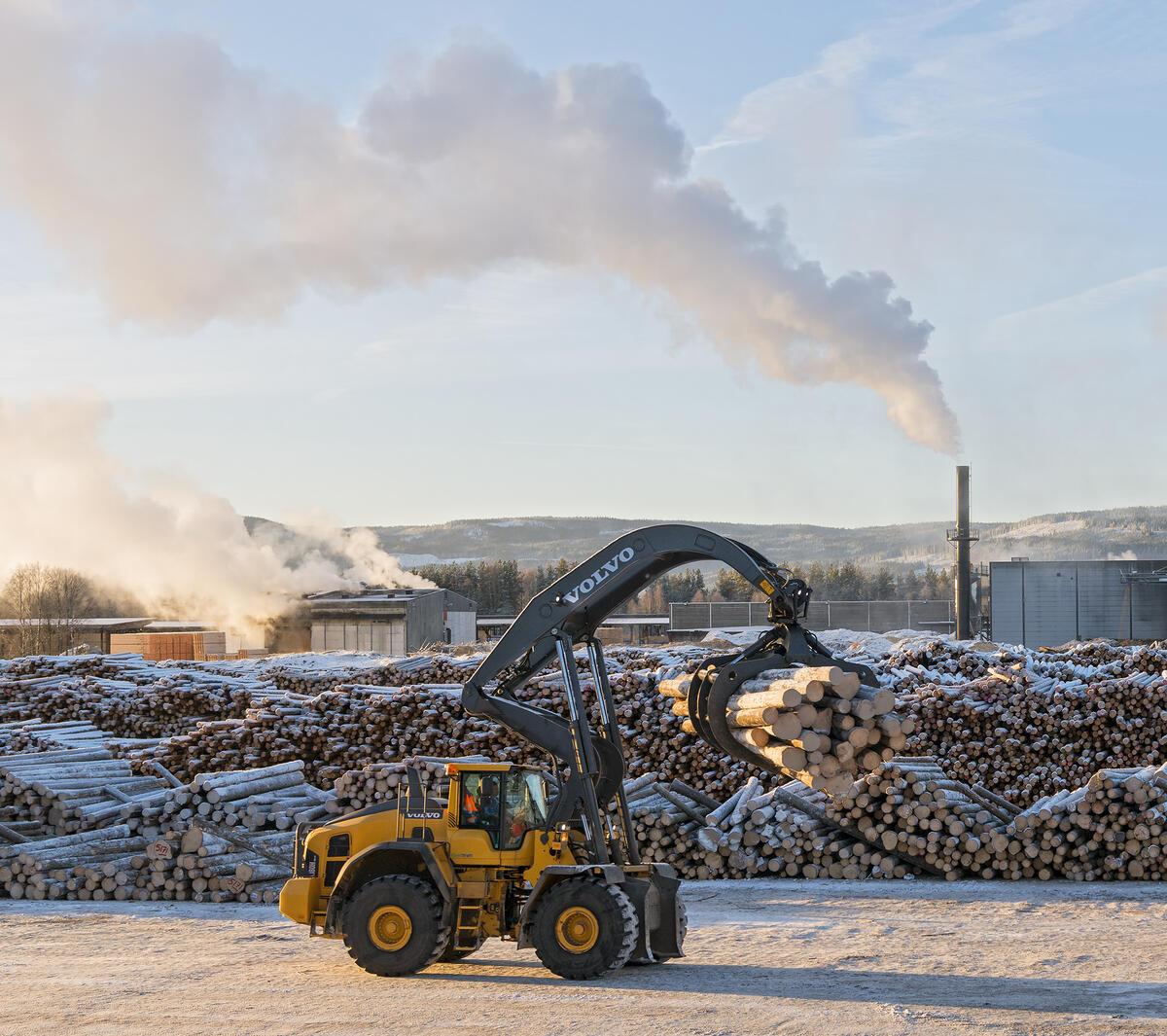 Griplaster på sagbrukstomta til Moelven Våler AS. (Foto/Photo)