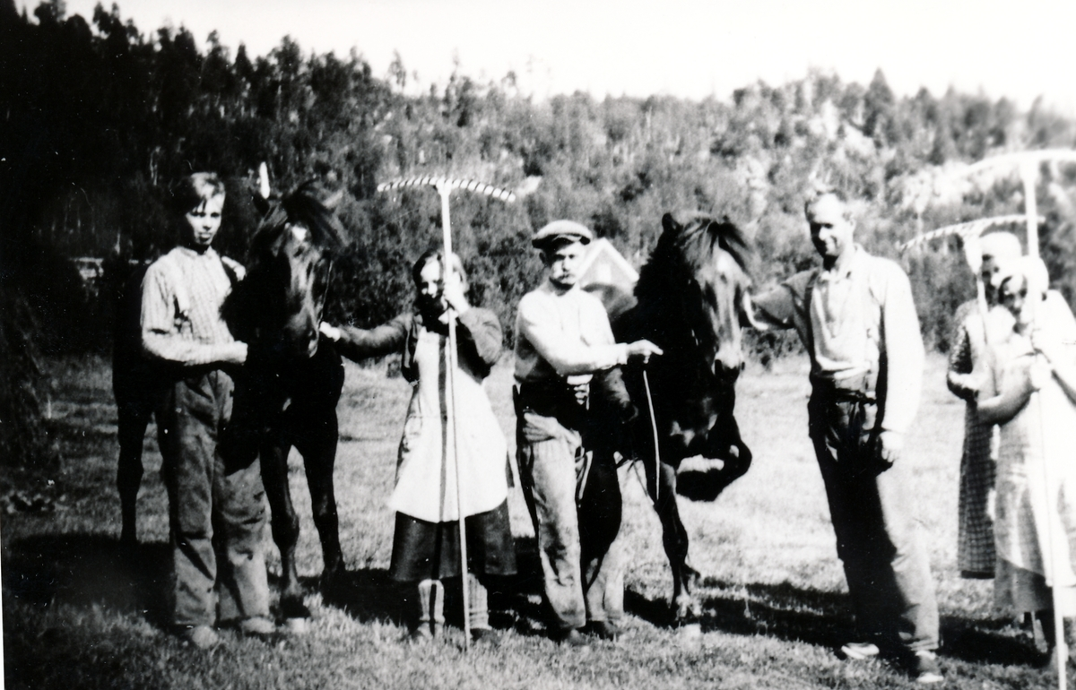 På Storjorda i slåtta i 1941. Tranøy