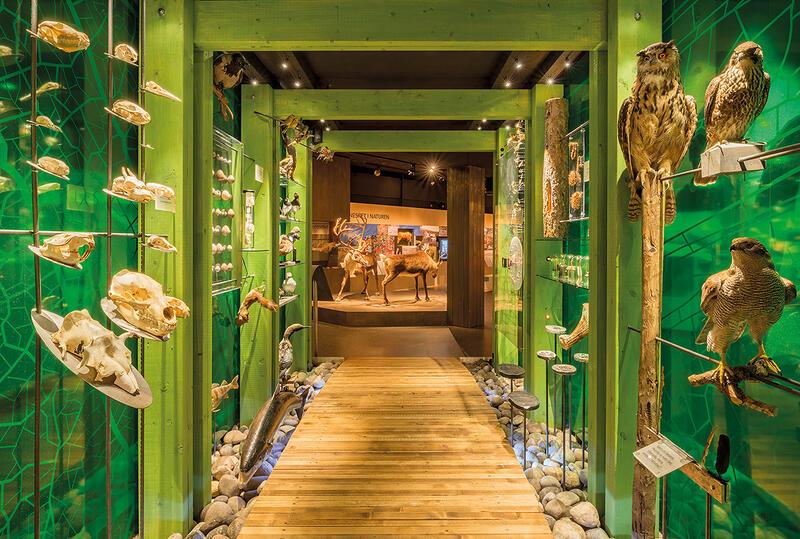 grønn portal i TRÅKK (Foto/Photo)