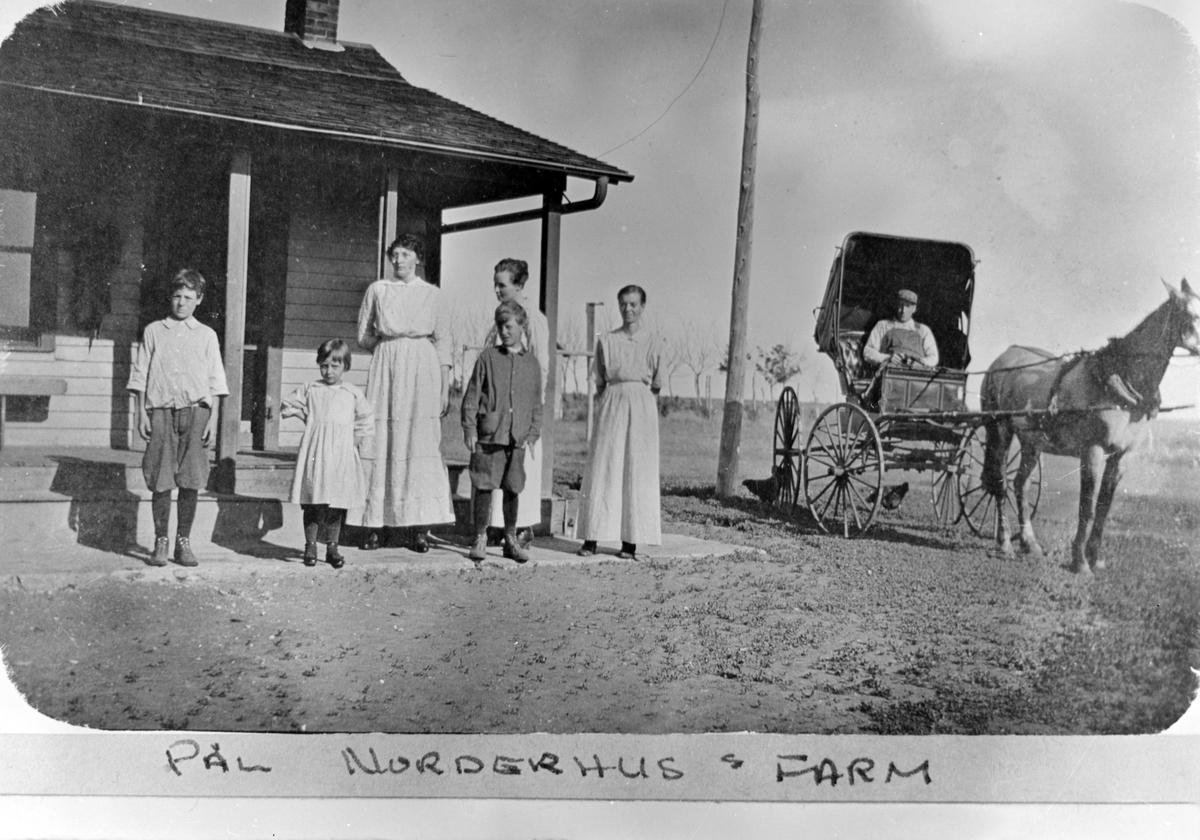 Pål Norderhus sin farm, Bottineau County, Nort Dakota, USA 7 personer, hus og hest med vogn