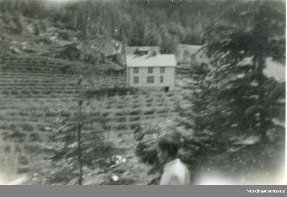Frukthagen sett fra Baklia - våren 1950