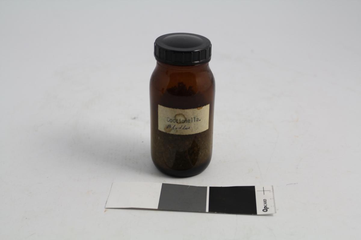 Brunt rundt medisinglass med sort bakelitt skrukork. Hvit signatur: Coccionella, som betyr kokionellalus. Glasset ble brukt til oppbevaring av kokionellalus, som ble brukt til plantefarging.