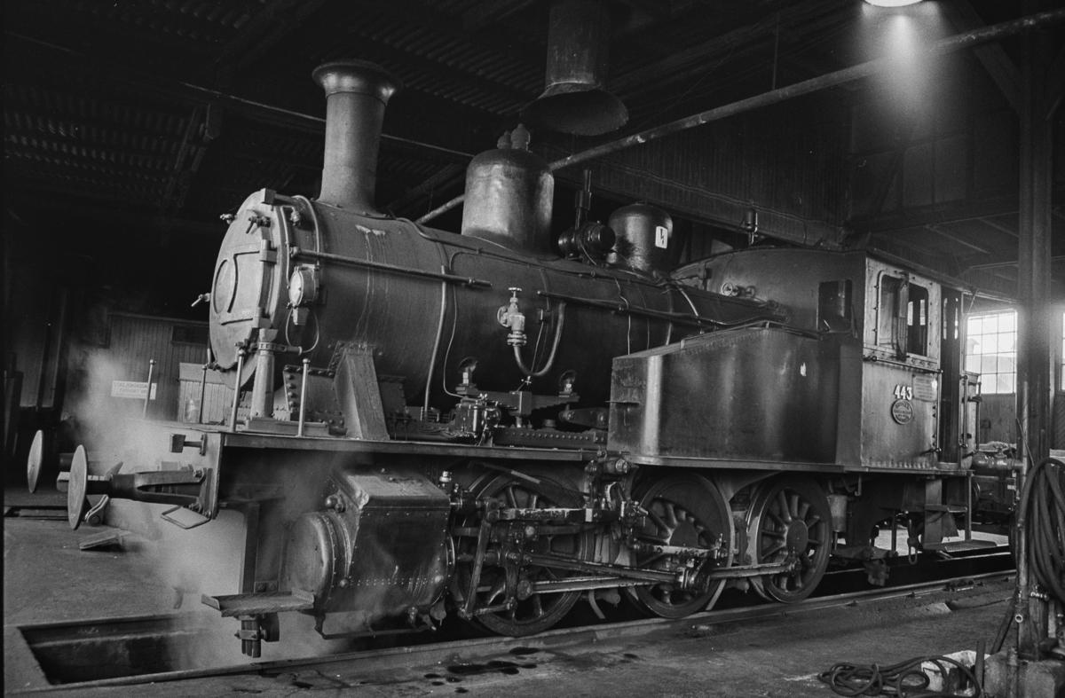 Utrangert damplokomotivtype 23b nr. 443 i lokomotivstallen på Sundland i Drammen.