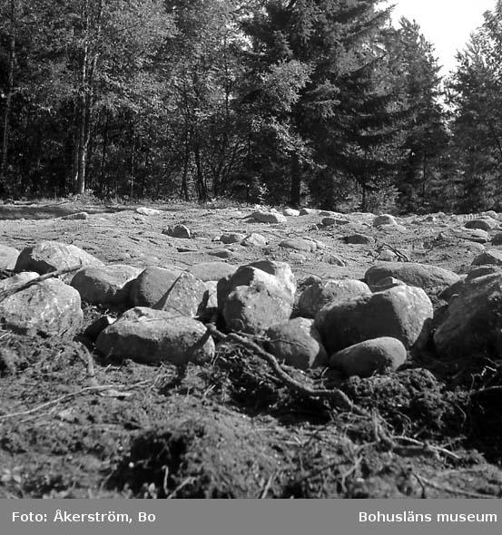 Naverstad socken. Smedberg. Fornlämning 103. Efter utgrävning. Sedd från sydost.